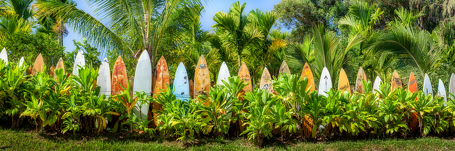 Maui Surfboards