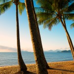 2015-67 palm cove queensland